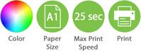 Color A1 25sec Print