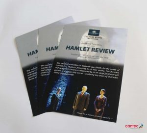 Theatre Royal Waterford Hamlet Review Flyer