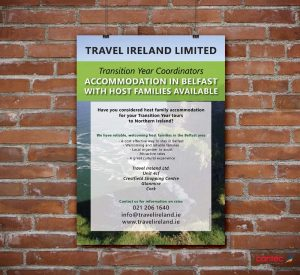 Travel Ireland Poster