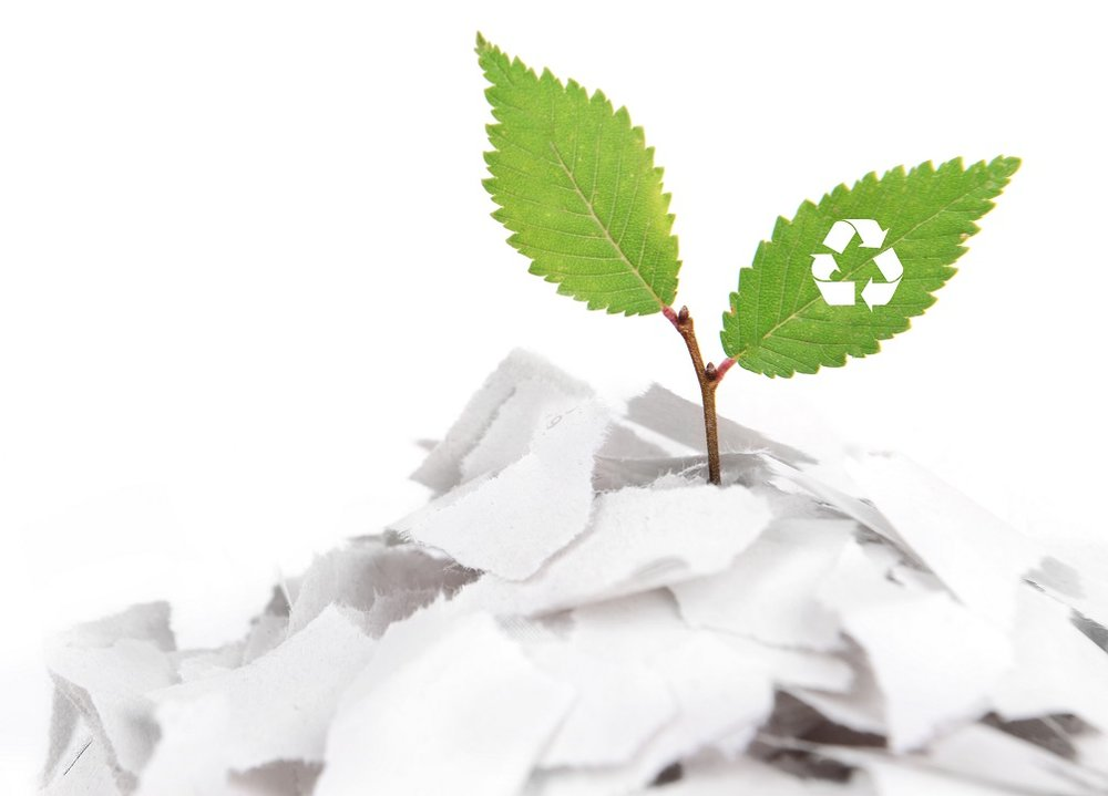 Green leaf with a recycling symbol on it, growing out of a pile of paper - reduce waste paper an printing costs