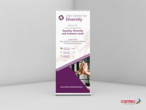 Irish Centre of Diversity Roll up Banner
